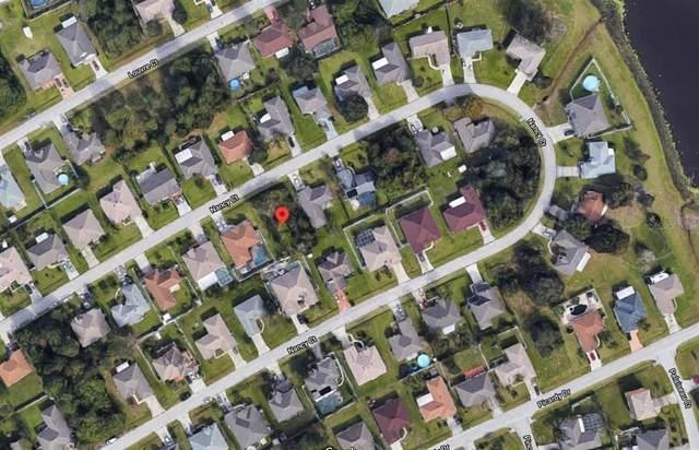 Nancy Court, Kissimmee, FL 34759 (MLS #S5052227) :: CGY Realty