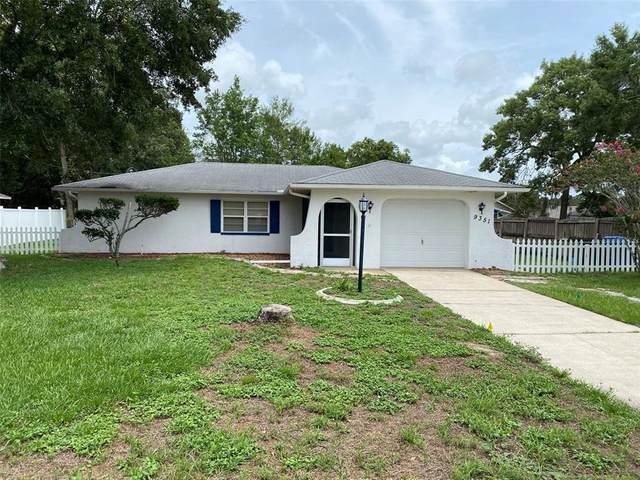 9351 Van Allen Way, Spring Hill, FL 34608 (MLS #S5052251) :: Zarghami Group