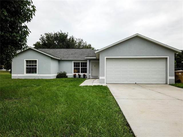13231 Moonflower Ct, Clermont, FL 34711 (MLS #S5052262) :: Realty Executives