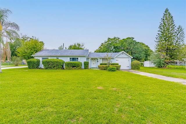 338 Missouri Avenue, Saint Cloud, FL 34769 (MLS #S5052282) :: The Robertson Real Estate Group