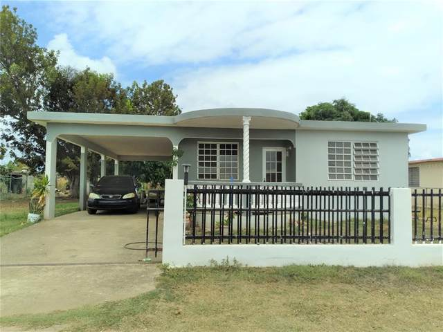 Sector Lanusse Lot-B, SALINAS, PR 00751 (MLS #S5052427) :: Rabell Realty Group