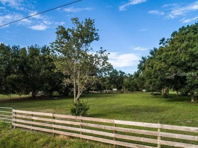 Saint Cloud, FL 34772 :: Zarghami Group