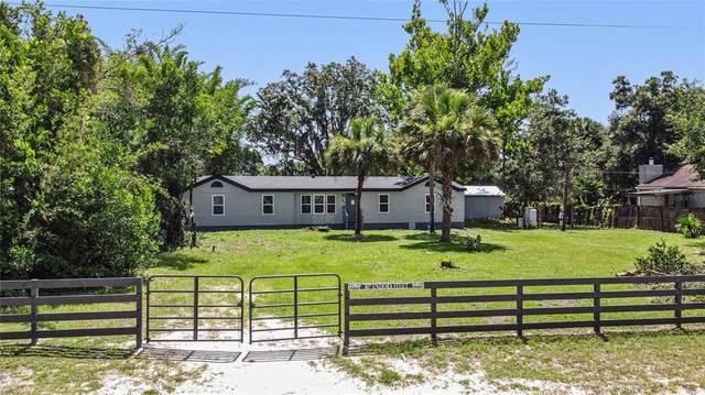 307 Endora Street, Ormond Beach, FL 32174 (MLS #S5052999) :: Zarghami Group