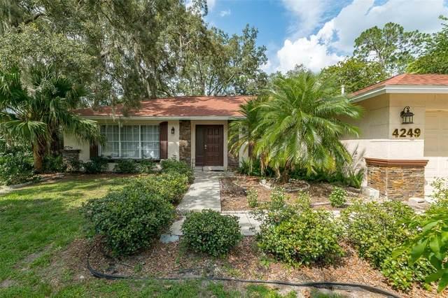 4249 N Econlockhatchee Trail, Orlando, FL 32817 (MLS #S5053175) :: Zarghami Group