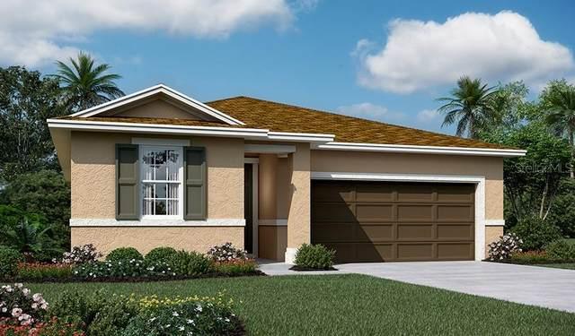 8025 Cherrystone Street, Leesburg, FL 34748 (MLS #S5053246) :: Kreidel Realty Group, LLC