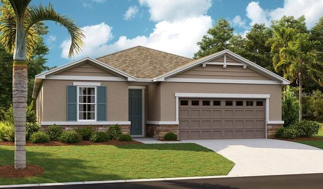 10232 Spring Lake Drive, Clermont, FL 34711 (MLS #S5053280) :: Expert Advisors Group