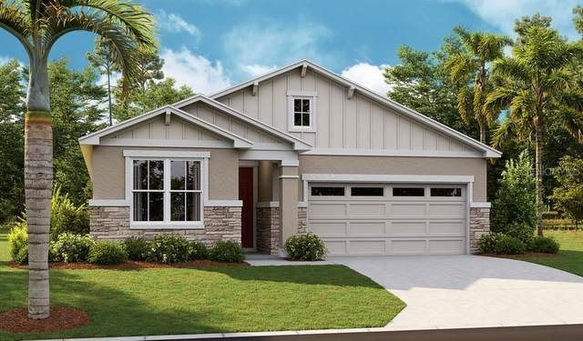 10253 Spring Lake Drive, Clermont, FL 34711 (MLS #S5053281) :: Cartwright Realty