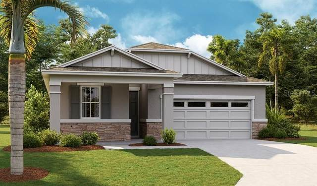 10228 Spring Lake Drive, Clermont, FL 34711 (MLS #S5053283) :: Cartwright Realty