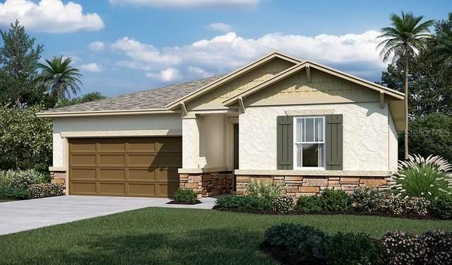 5320 Sparrow Song Drive, Okahumpka, FL 34762 (MLS #S5053365) :: Zarghami Group