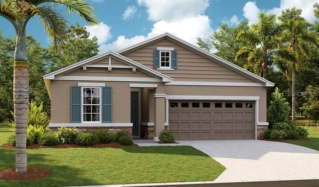 10261 Spring Lake Drive, Clermont, FL 34711 (MLS #S5053452) :: Cartwright Realty