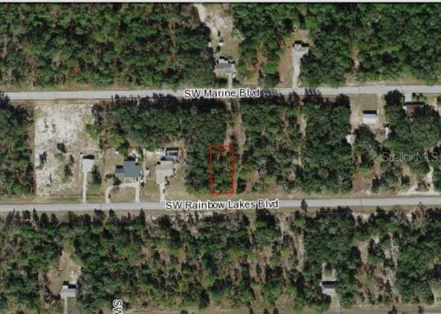Undetermined, Dunnellon, FL 34431 (MLS #S5053535) :: Frankenstein Home Team