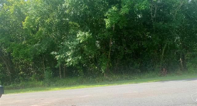 Milan Drive, Kissimmee, FL 34758 (MLS #S5053563) :: Blue Chip International Realty