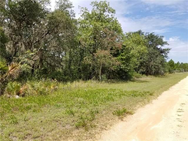 2743 W Seville Drive, Avon Park, FL 33825 (MLS #S5053654) :: Everlane Realty