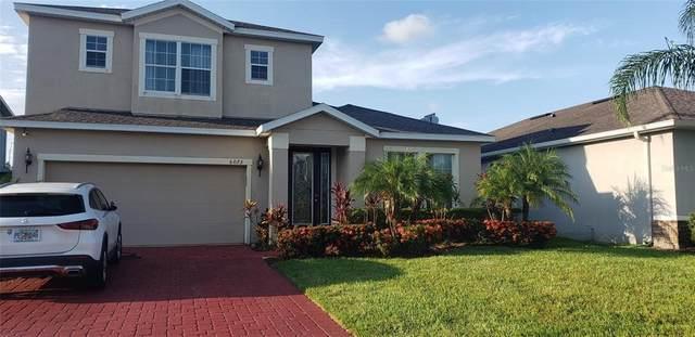 6073 Fender Court, Orlando, FL 32837 (MLS #S5053672) :: Prestige Home Realty