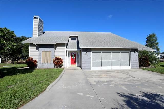 533 Horizon Drive, Kenansville, FL 34739 (MLS #S5053721) :: The Light Team