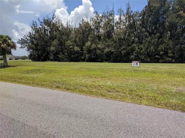 300 Maple Lane, Sebring, FL 33876 (MLS #S5053883) :: Premium Properties Real Estate Services