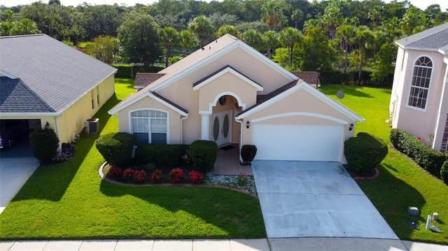 6757 Bouganvillea Crescent Drive, Orlando, FL 32809 (MLS #S5053921) :: Zarghami Group