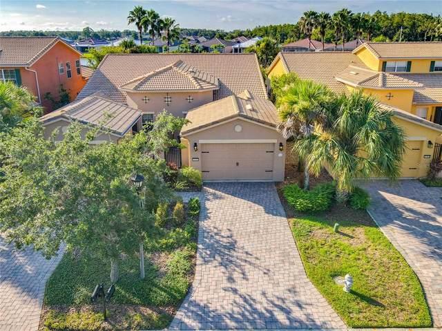2496 Palm Tree Drive, Kissimmee, FL 34759 (MLS #S5053975) :: CENTURY 21 OneBlue