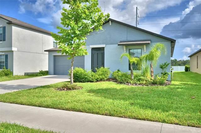 11214 Leland Groves Drive, Riverview, FL 33579 (MLS #S5054010) :: Zarghami Group