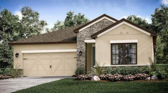 3897 Carrick Bend Drive, Kissimmee, FL 34746 (MLS #S5054017) :: The Kardosh Team