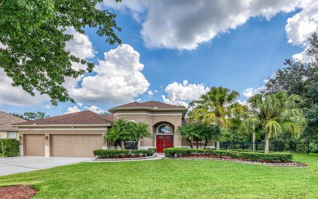 4701 Yamato Court, Orlando, FL 32837 (MLS #S5054033) :: The Light Team