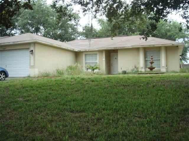 Clermont, FL 34711 :: Zarghami Group