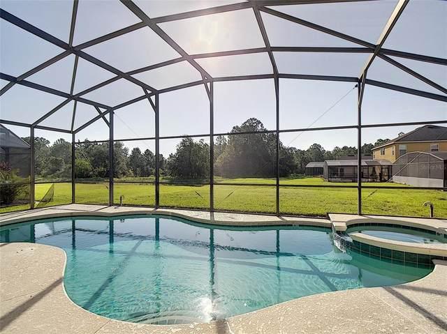 1039 Orange Cosmos Boulevard, Davenport, FL 33837 (MLS #S5054169) :: Global Properties Realty & Investments