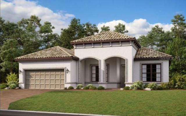 942 Walnut Creek Lane, Poinciana, FL 34759 (MLS #S5054254) :: SunCoast Home Experts