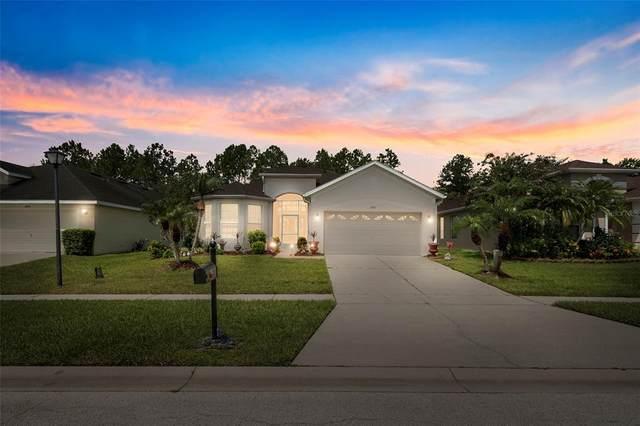 3183 Stonehurst Circle, Kissimmee, FL 34741 (MLS #S5054317) :: Premium Properties Real Estate Services