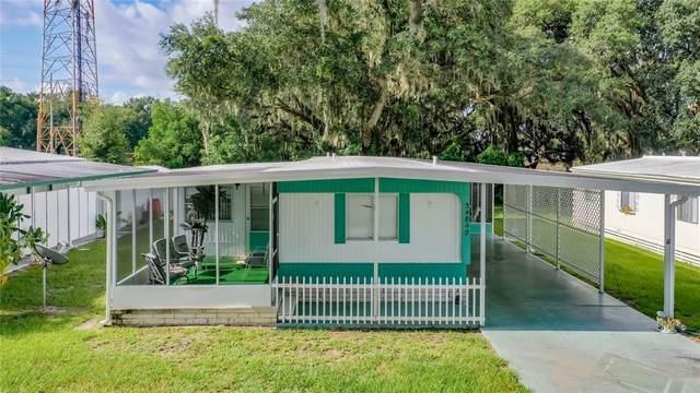 34840 Carl Avenue, Zephyrhills, FL 33541 (MLS #S5054348) :: Global Properties Realty & Investments