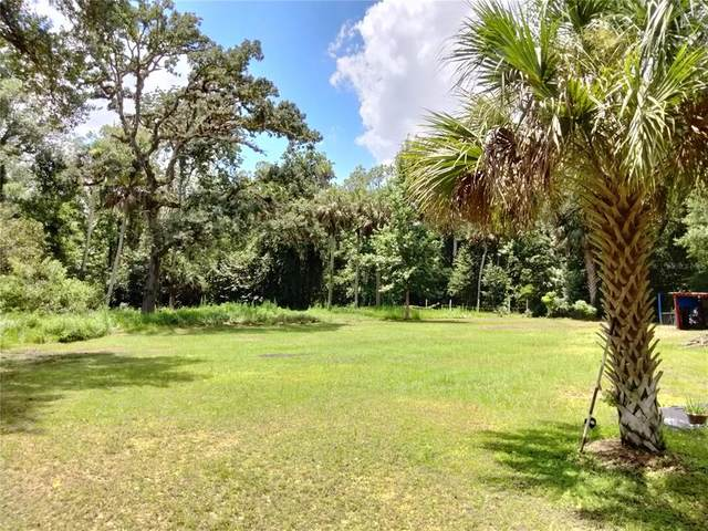 8320 Choctaw Trail, Kissimmee, FL 34747 (MLS #S5054362) :: Premium Properties Real Estate Services