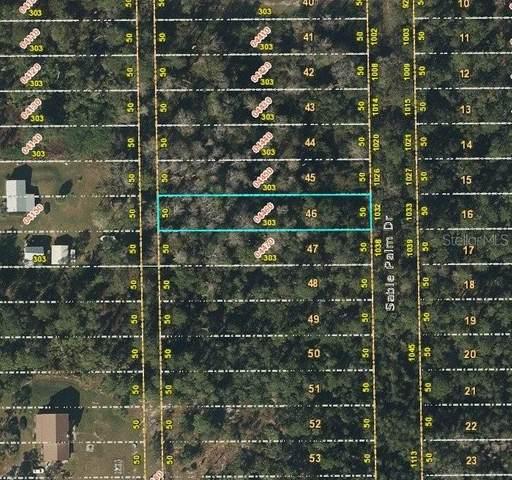 1038 Sable Palm Drive, Christmas, FL 32709 (MLS #S5054409) :: Team Turner