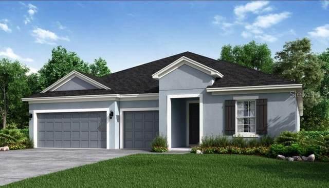 2982 Crest Wave Drive, Clermont, FL 34711 (MLS #S5054816) :: Orlando Homes Finder Team