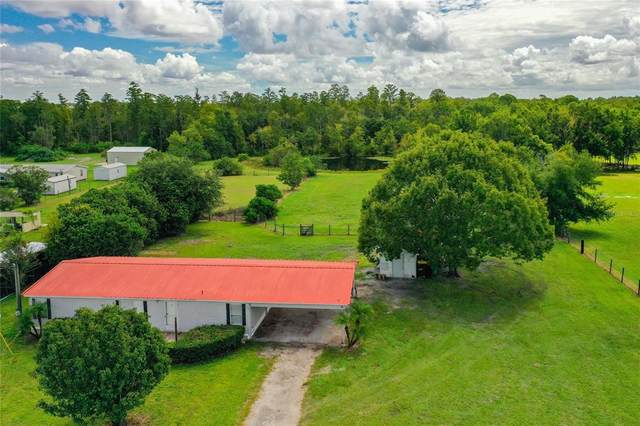 2845 Ham Brown Road, Kissimmee, FL 34746 (MLS #S5055028) :: Your Florida House Team
