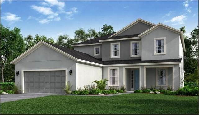 2986 Crest Wave Drive, Clermont, FL 34711 (MLS #S5055100) :: GO Realty