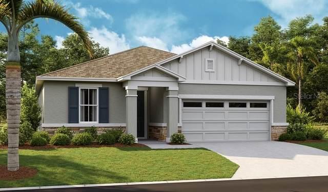 5249 Meadow Song Drive, Okahumpka, FL 34762 (MLS #S5055349) :: Zarghami Group