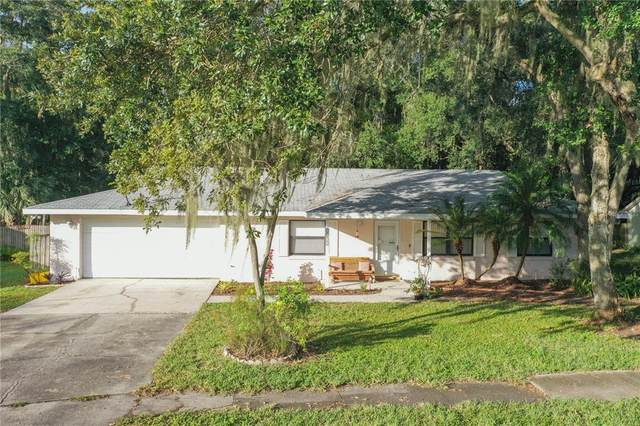3694 Opal Drive, Mulberry, FL 33860 (#S5055550) :: Caine Luxury Team