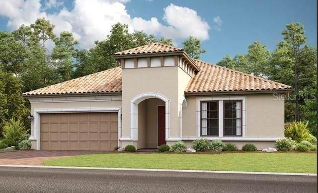 513 Lago Matisse Street, Kissimmee, FL 34759 (MLS #S5056355) :: Vacasa Real Estate