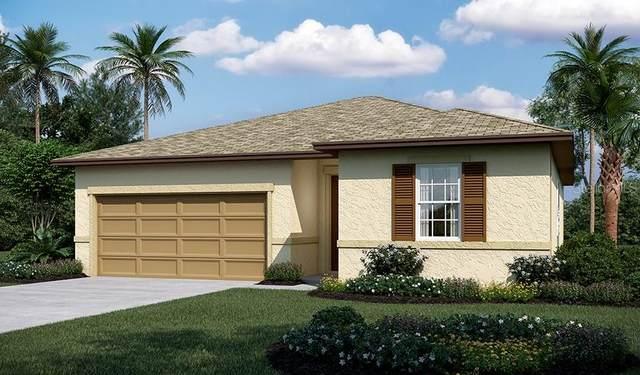 336 Lake Smart Circle, Winter Haven, FL 33881 (MLS #S5056591) :: American Premier Realty LLC