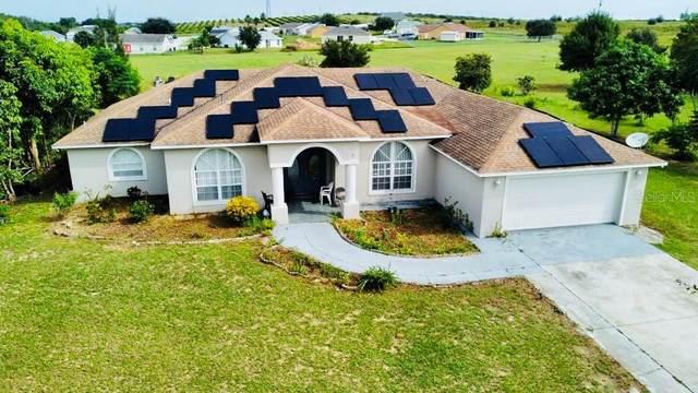 310 Hatchineha Road, Haines City, FL 33844 (MLS #S5056592) :: American Premier Realty LLC