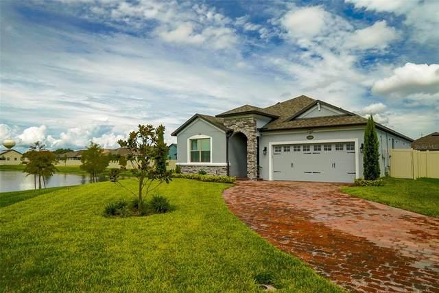 3408 Edgehill Court, Saint Cloud, FL 34772 (MLS #S5056632) :: Expert Advisors Group
