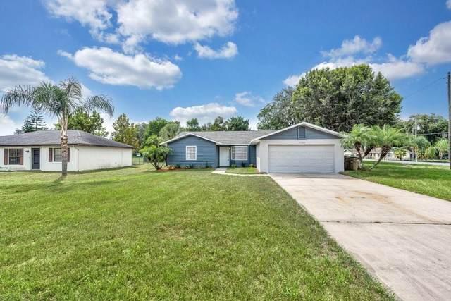 31729 Tropical Shores Drive, Tavares, FL 32778 (MLS #S5056636) :: Vacasa Real Estate