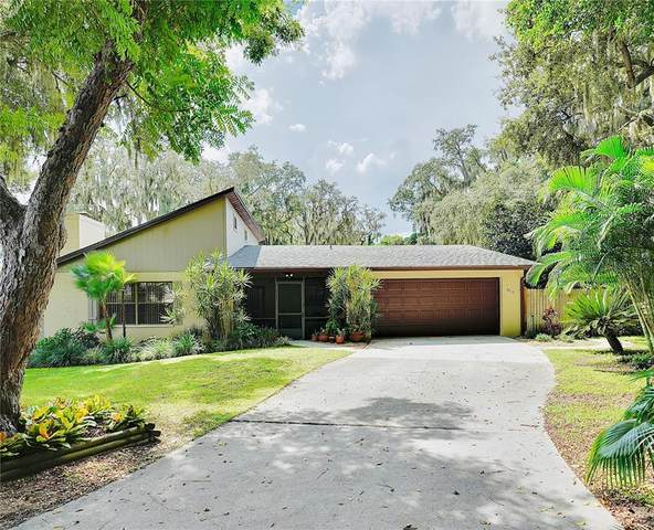 850 Lake Elbert Park Ne, Winter Haven, FL 33881 (MLS #S5056690) :: Team Turner