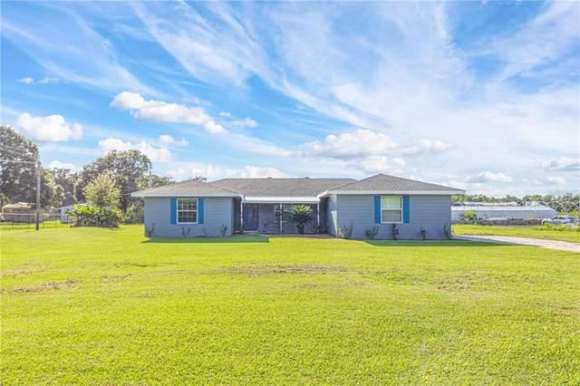 8804 Harrison Road, Lakeland, FL 33810 (MLS #S5056761) :: Florida Real Estate Sellers at Keller Williams Realty