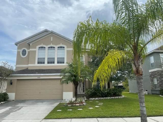 2838 Sand Arbor Circle, Orlando, FL 32824 (MLS #S5056779) :: CENTURY 21 OneBlue