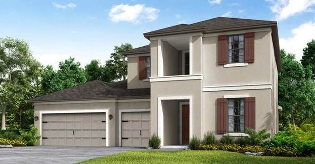3877 Golden Knot Drive, Kissimmee, FL 34746 (MLS #S5056939) :: Kelli and Audrey at RE/MAX Tropical Sands