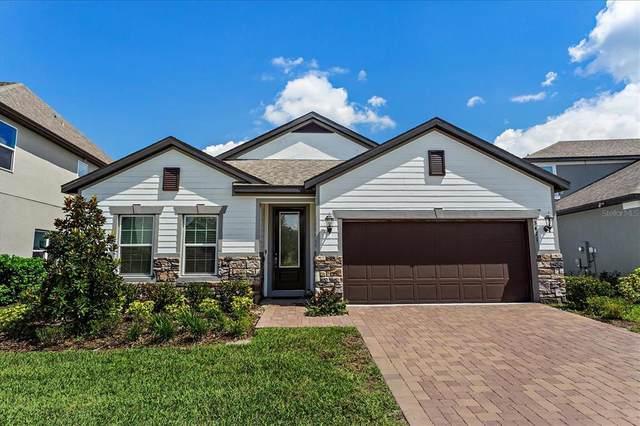 3411 Feathergrass Court, Harmony, FL 34773 (MLS #S5056948) :: Armel Real Estate