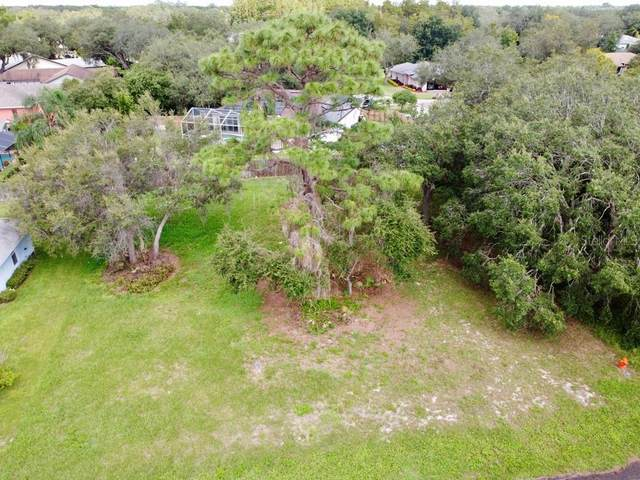 Cypress Run, Haines City, FL 33844 (MLS #S5056980) :: Griffin Group