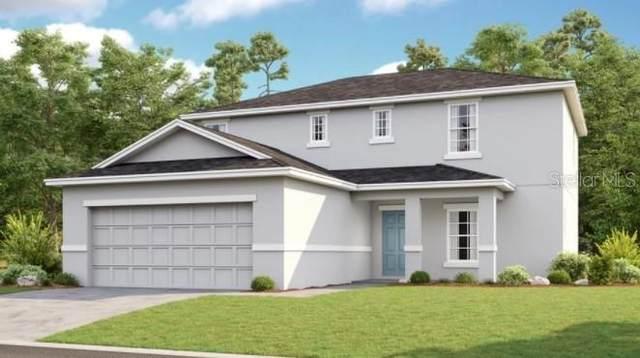 238 Zircon Road, Kissimmee, FL 34758 (MLS #S5057004) :: Aybar Homes