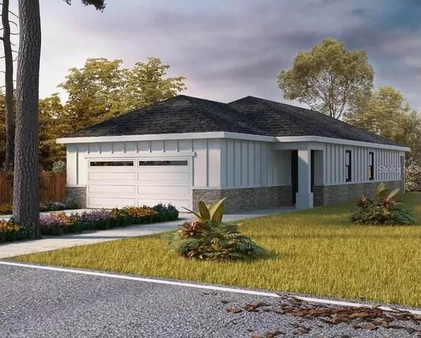 459 Carroll Avenue, Deland, FL 32720 (MLS #S5057060) :: The Truluck TEAM
